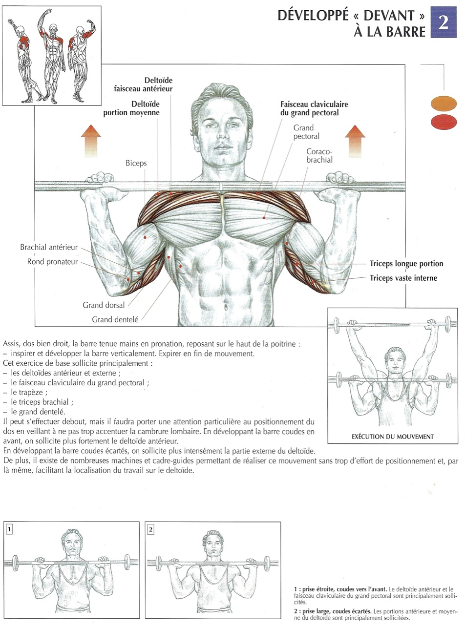 Bpjeps musculation r ussir son bpjeps - Developper coucher guider ...