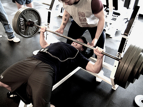 reussir son bpjeps bpjeps halterophilie bench press