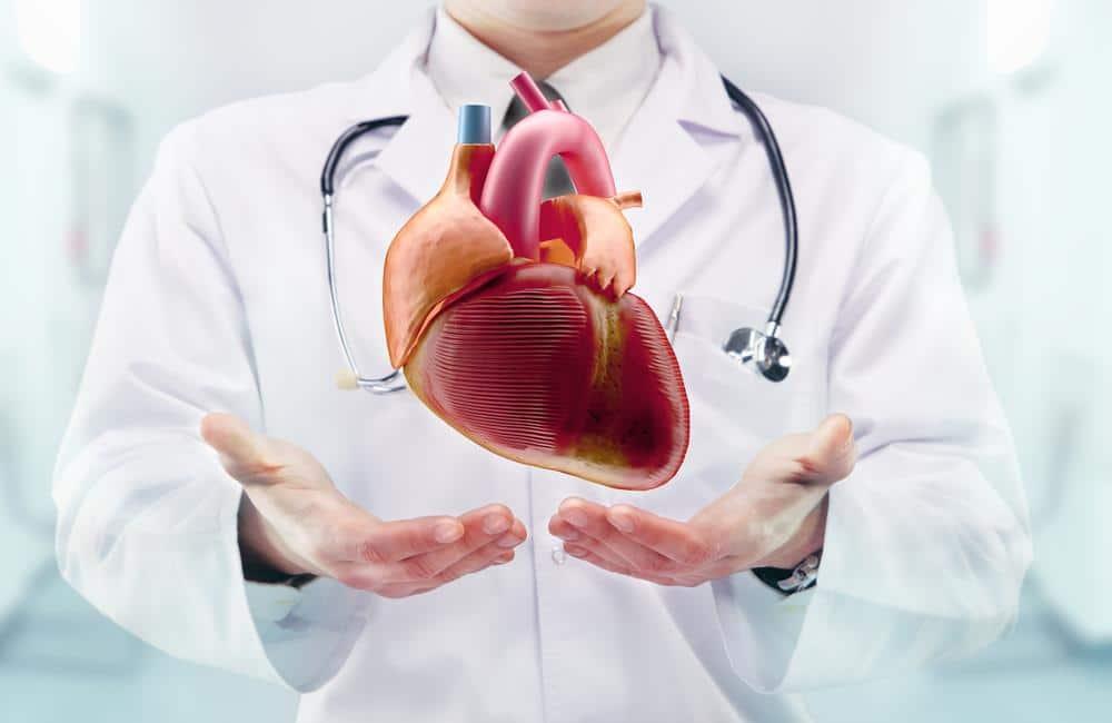 Comment réagit votre coeur durant l'effort ?