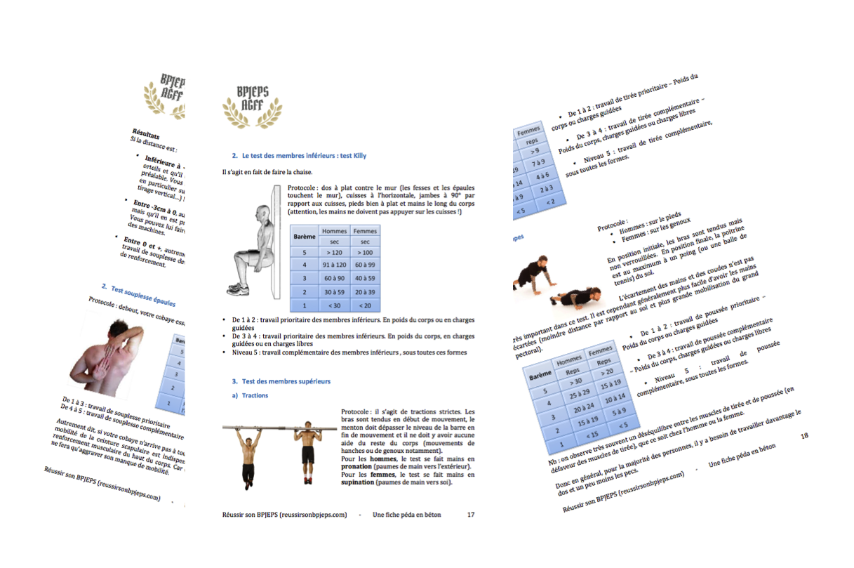 Dossier péda BPJEPS AGFF mention D tests questions essentielles cobaye