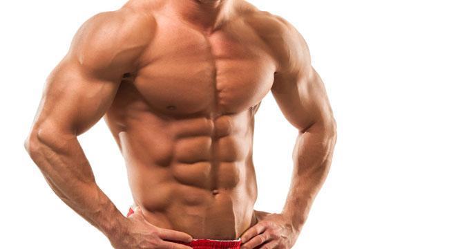 Livre : L'Hypertrophie, prise de muscle et masse