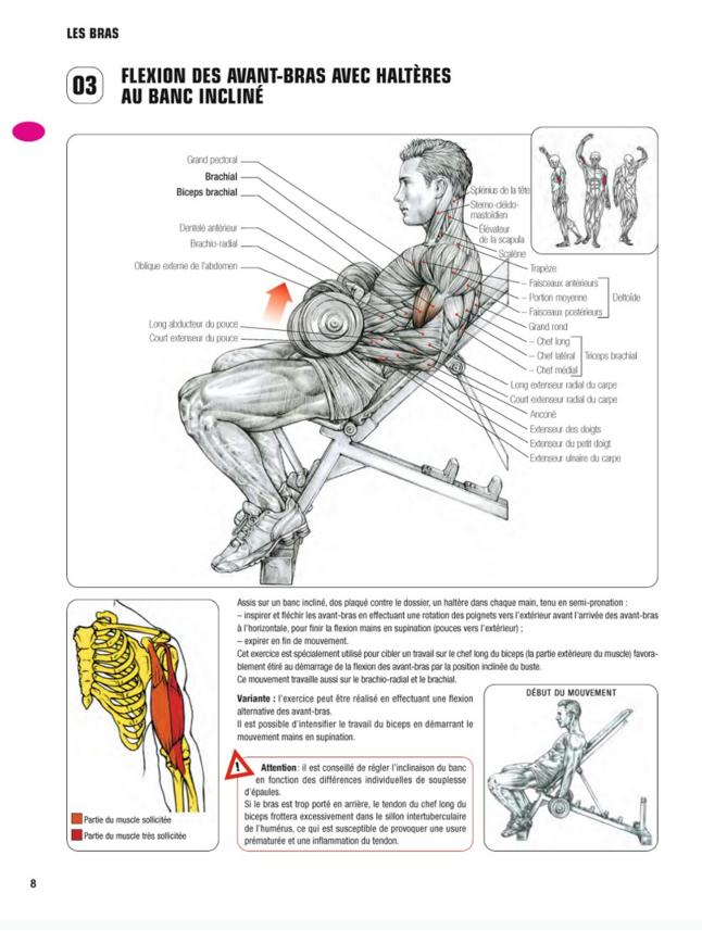 Curl biceps Guide des mouvements Frédéric Delavier