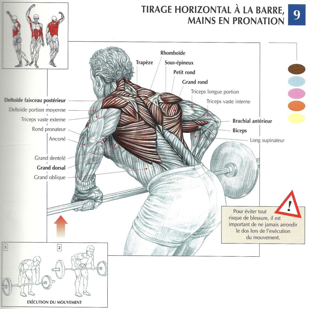 Rowing tirage horizontal à la barre mouvements de base Delavier illustration