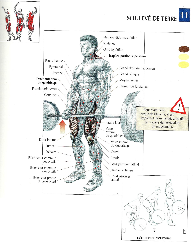 BPJEPS Musculation
