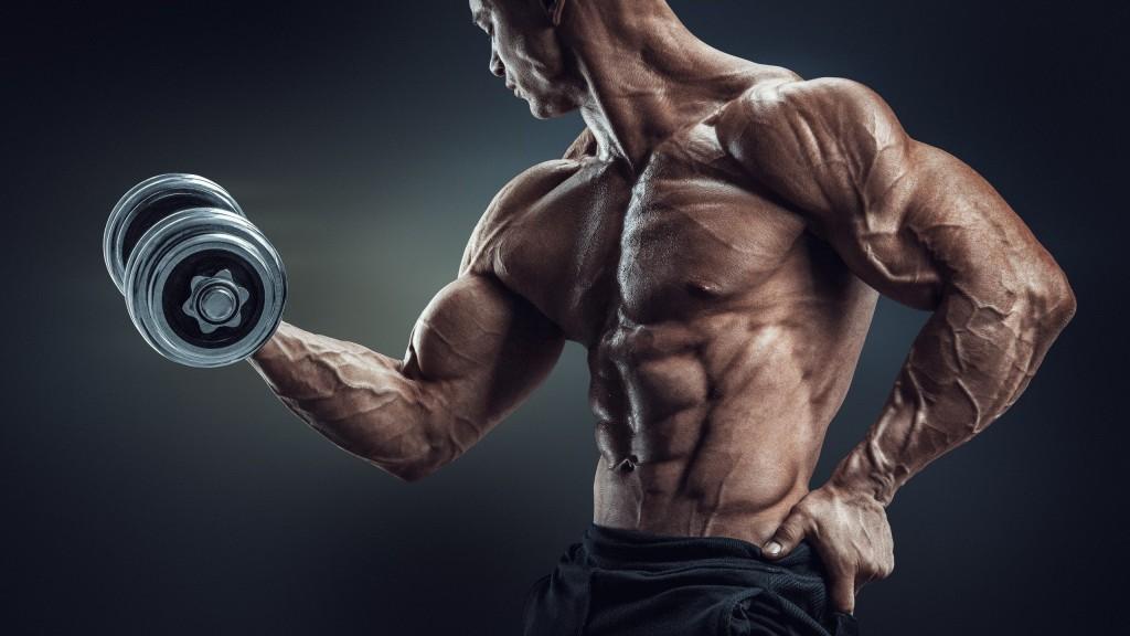 Reussir son BPJPEPS AF AGFF LES SECRETS DE LA FORCE force halterophilie musculation