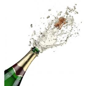 champagne niche coach sportif bpjeps agff