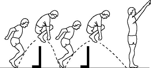 Hurdle jumps bpjeps agff musculation d entretien