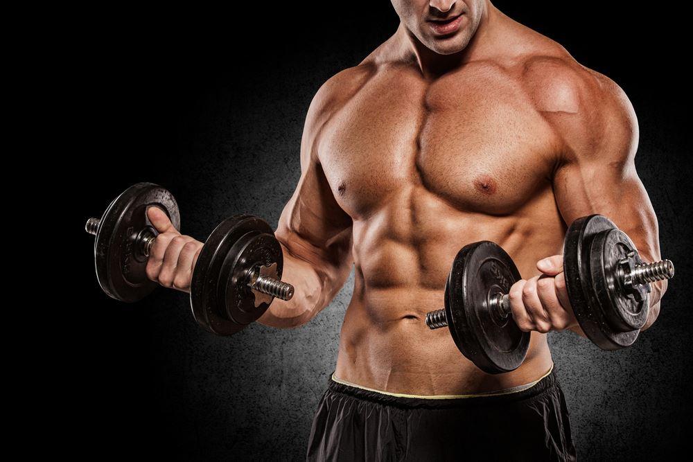 La musculation d'entretien
