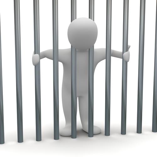 prison carte professionnelle BPJEPS risque
