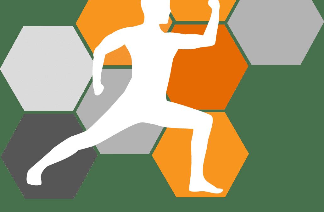 Hexfit : notre test du logiciel pour coachs sportifs